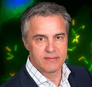 Andrea van Elsas Aduro Biotech