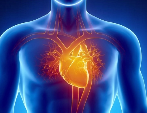 img-Emerging Cardiomyopathy Therapeutics